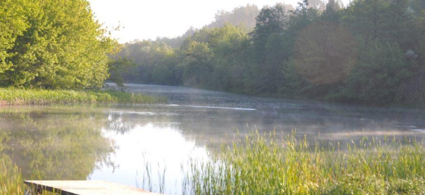 Галерея. Річка Рось1