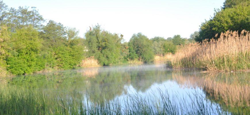 Галерея. Річка Рось3